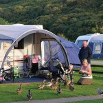 newquay camping breaks 150x150