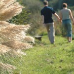 couple walking at porth beach 150x150