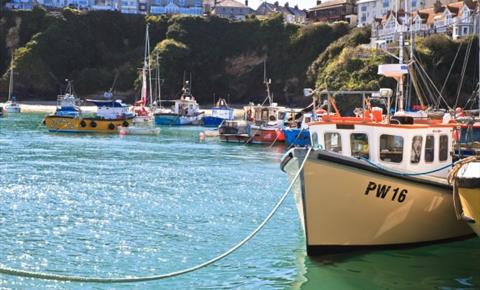 Newquay Harbour sports Day
